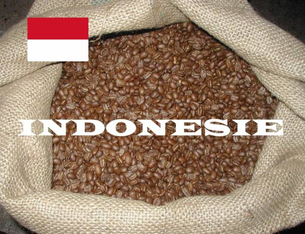 CPUROR INDONESIE